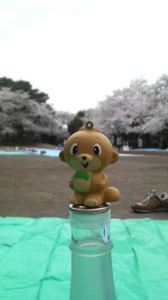 多摩川台公園1.jpg