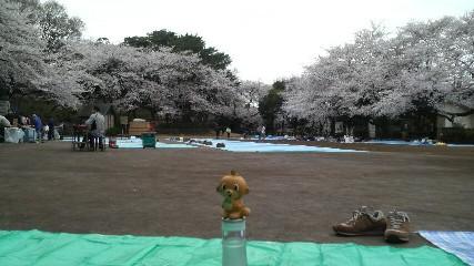 多摩川台公園3.jpg