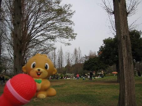 大崎公園1.jpg