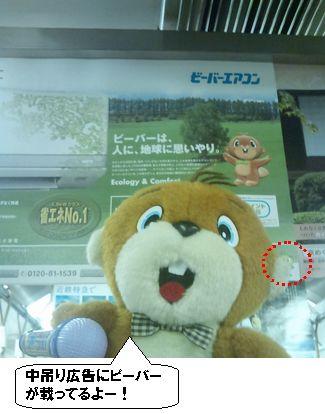 kinntetubi-ba-04.jpg