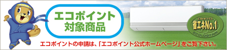 eco_point_b448.jpg